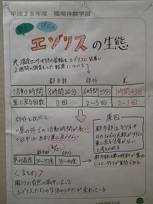 https://www.kankyo.sl-plaza.jp/blog/20161110-7.jpg