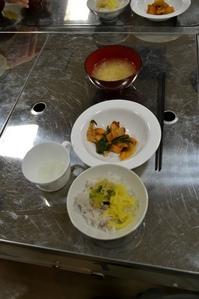 syoku (2).jpg