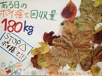 PB060077.jpg