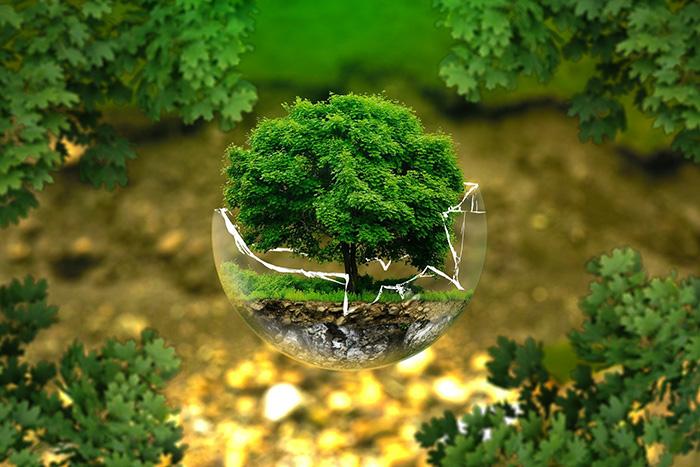 環境イメージ写真